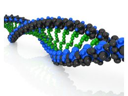 Colored Dna Structure Of Humans Stock Photo