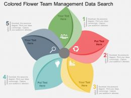 Colored Flower Team Management Data Search Flat Powerpoint Design