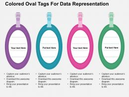 Colored Oval Tags For Data Representation Flat Powerpoint Design