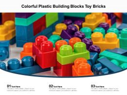 Colorful Plastic Building Blocks Toy Bricks