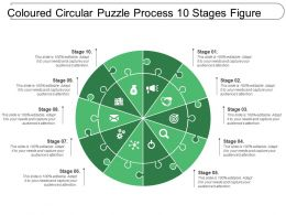 Coloured Circular Puzzle Process 10 Stages Figure