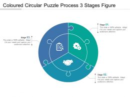 Coloured Circular Puzzle Process 3 Stages Figure
