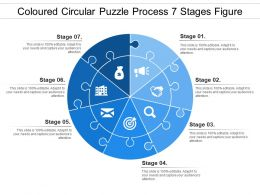 Coloured Circular Puzzle Process 7 Stages Figure