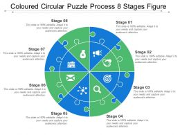 Coloured Circular Puzzle Process 8 Stages Figure