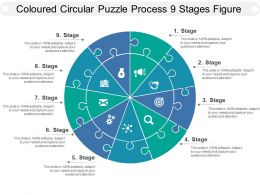 Coloured Circular Puzzle Process 9 Stages Figure