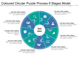 Coloured Circular Puzzle Process 9 Stages Model