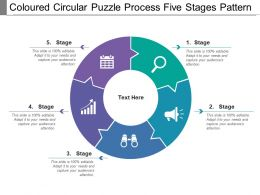 Coloured Circular Puzzle Process Five Stages Pattern