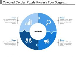 Coloured Circular Puzzle Process Four Stages Pattern