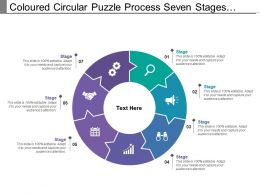 Coloured Circular Puzzle Process Seven Stages Pattern