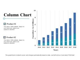 column_chart_ppt_styles_display_Slide01