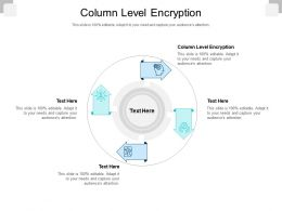 Column Level Encryption Ppt Powerpoint Presentation Show Microsoft Cpb