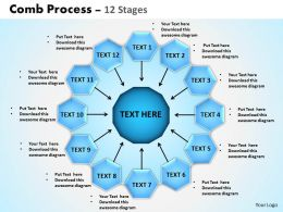 Comb Process 12 Stages Powerpoint Slides And Ppt Templates 0412