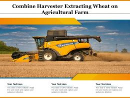 Combine Harvester Extracting Wheat On Agricultural Farm