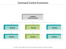 Command Control Economics Ppt Powerpoint Presentation Styles Tips Cpb