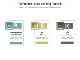 Commercial Bank Lending Process Ppt Powerpoint Presentation Pictures Brochure Cpb