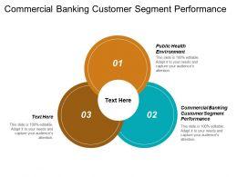 Commercial Banking Customer Segment Performance Public Health Environment Cpb