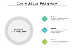 Commercial Loan Pricing Matrix Ppt Powerpoint Presentation Pictures Brochure Cpb