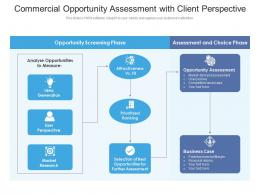 Commercial Opportunity Assessment With Client Perspective