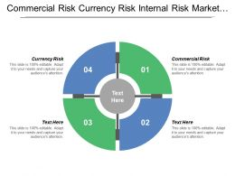 Commercial Risk Currency Risk Internal Risk Market Risk