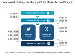 Commercial Strategy Functioning Of The Market And Own Strategic
