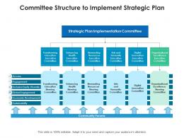 Committee Structure To Implement Strategic Plan