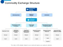 Commodity Exchange Structure Executive Directors Ppt Summary Background