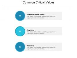Common Critical Values Ppt Powerpoint Presentation Layouts Graphics Download Cpb