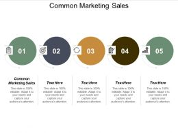 Common Marketing Sales Ppt Powerpoint Presentation File Graphics Cpb