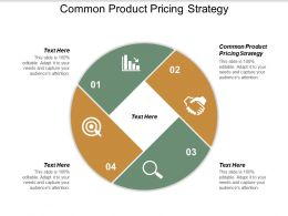 Common Product Pricing Strategy Ppt Powerpoint Presentation Pictures Graphic Tips Cpb