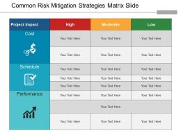 Common Risk Mitigation Strategies Matrix Slide Ppt Slide Themes