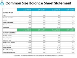 Common Size Balance Sheet Statement Fixed Assets Ppt Powerpoint Slides