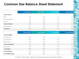 Common Size Balance Sheet Statement Ppt Icon Sample