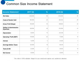 Common Size Income Statement Ppt Summary Designs Download