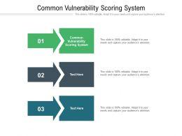 Common Vulnerability Scoring System Ppt Powerpoint Presentation Ideas Slides Cpb