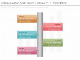 Communication And Culture Example Ppt Presentation