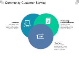 Community Customer Service Ppt Powerpoint Presentation File Infographic Template Cpb