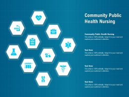 Community Public Health Nursing Ppt Powerpoint Presentation Model Templates