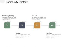 Community Strategy Ppt Powerpoint Presentation Infographic Template Infographics Cpb