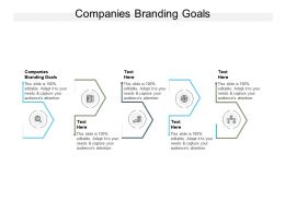 Companies Branding Goals Ppt Powerpoint Presentation Infographic Template Cpb
