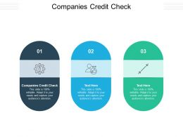 Companies Credit Check Ppt Powerpoint Presentation File Graphics Tutorials Cpb