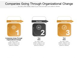Companies Going Through Organizational Change Ppt Diagram Lists Cpb