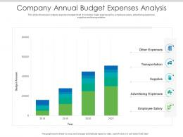Company Annual Budget Expenses Analysis
