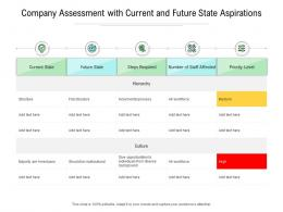 Company Assessment With Current And Future State Aspirations