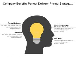 Company Benefits Perfect Delivery Pricing Strategy Target Audience