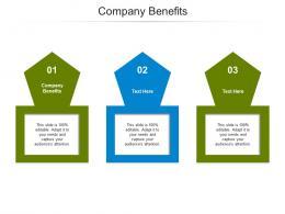 Company Benefits Ppt Powerpoint Presentation Ideas Slide Cpb