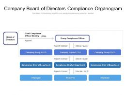 Company Board Of Directors Compliance Organogram