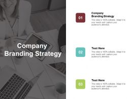 Company Branding Strategy Ppt Powerpoint Presentation File Design Templates Cpb