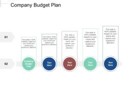 Company Budget Plan Ppt Powerpoint Presentation File Example File Cpb