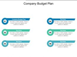 Company Budget Plan Ppt Powerpoint Presentation Summary Structure Cpb