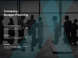 Company Budget Planning Ppt Powerpoint Presentation Infographics Graphics Cpb